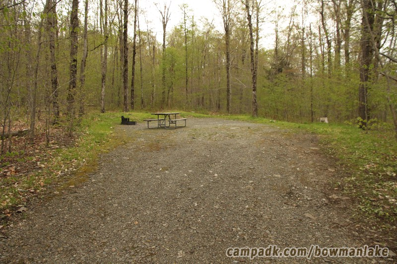Campsite Photo of Site 150 at Bowman Lake State Park, New York - Looking at Site from Part Way In