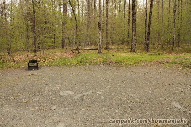 Campsite Photo of Site 150 at Bowman Lake State Park, New York - Cross Site View