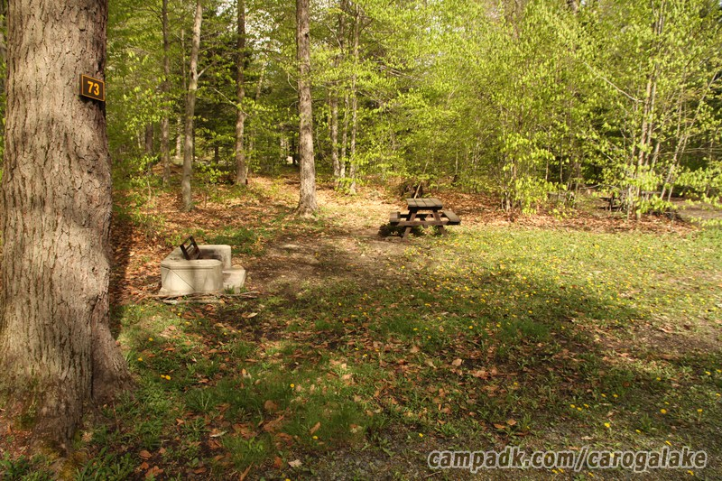 caroga lake chat sites There are 5 pet friendly vacation rental homes in caroga lake, ny need help  deciding where to stay view pictures of each dog friendly rental, get the scoop.