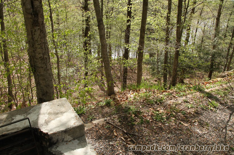 Campsite Photo of Site 20 at Cranberry Lake Campground, New York - Fireplace View