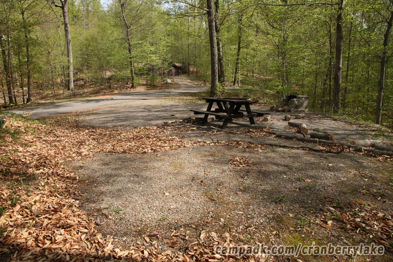 Campsite Photo of Site 20 at Cranberry Lake Campground, New York - Looking Back Towards Road