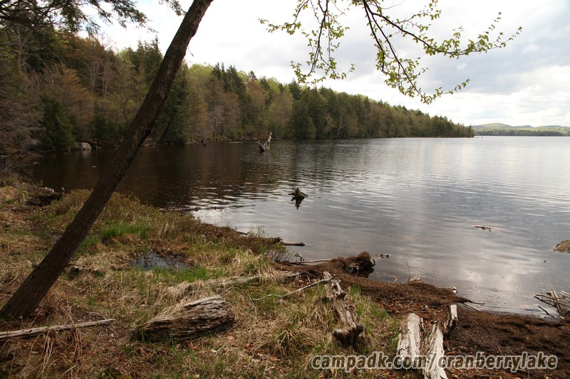cranberry lake dating site Search new york criminal and public records access statewide free arrest, police reports, open warrants and court searches.