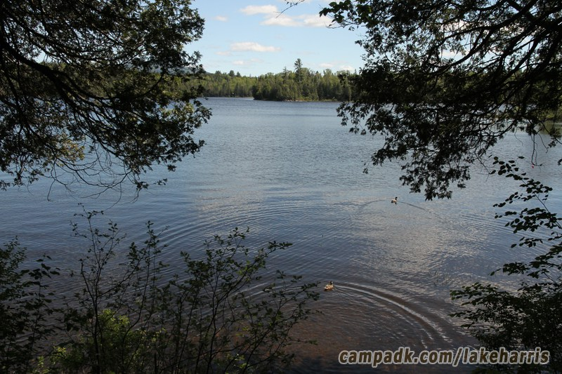 cranberry lake 50 pocket guide