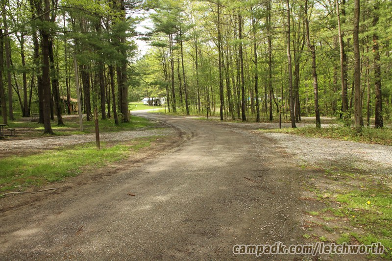 Campsite Photo of Site 117 at Letchworth State Park, New York - View Down Road From Campsite