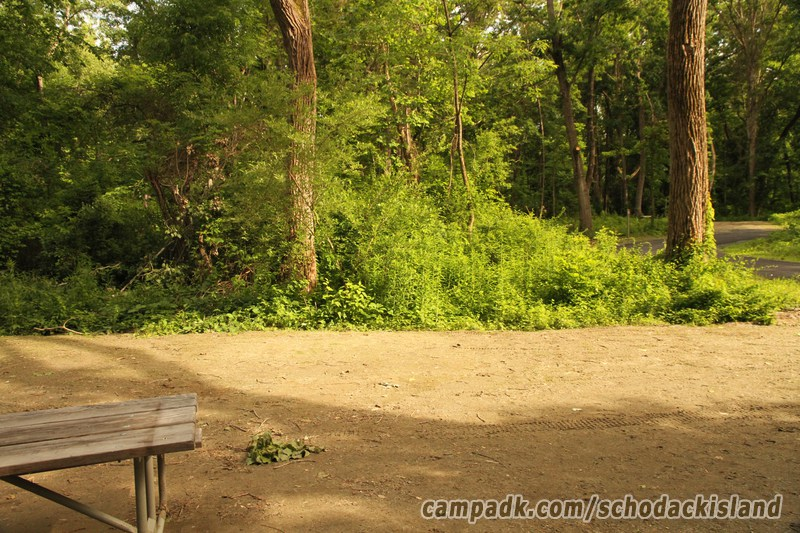 Schodack Island State Park Camping