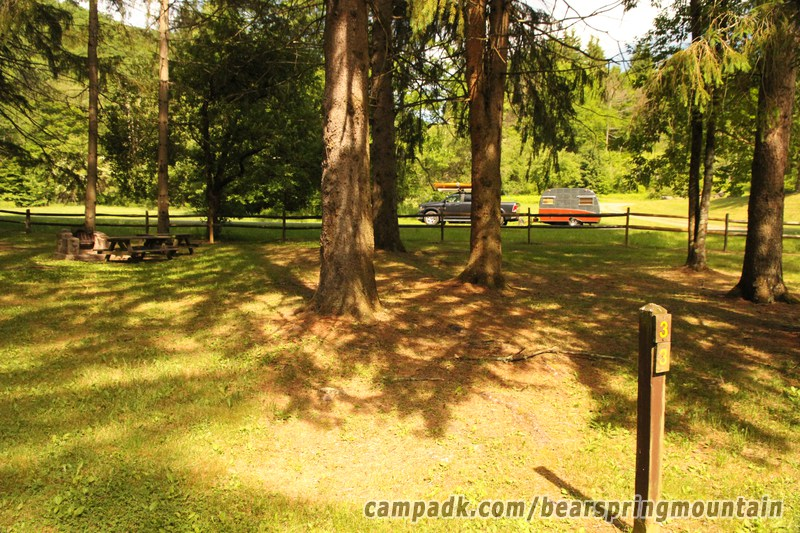 Campsite Photo of Site 33 at Bear Spring Mountain Campground, New York - Looking at Site from Road Sign Visible