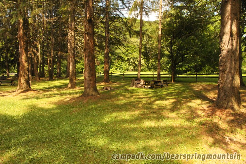 Campsite Photo of Site 33 at Bear Spring Mountain Campground, New York - Looking at Site from Road