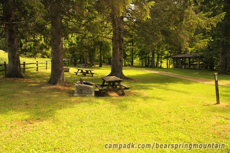 Campsite Photo of Site 31 at Bear Spring Mountain Campground, New York - Cross Site View