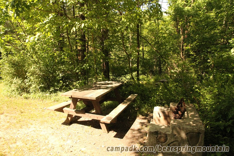 Campsite Photo of Site 22 at Bear Spring Mountain Campground, New York - Cross Site View