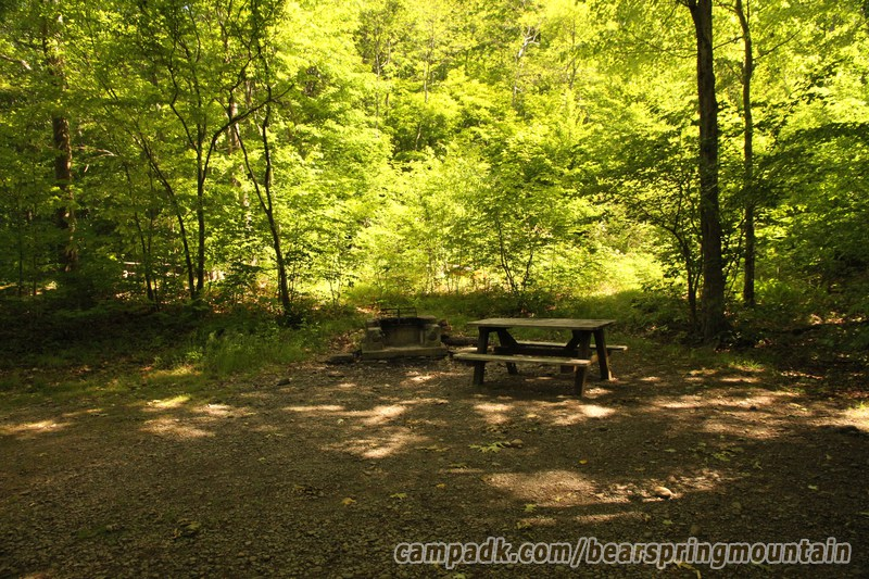 Campsite Photo of Site 14 at Bear Spring Mountain Campground, New York - Cross Site View