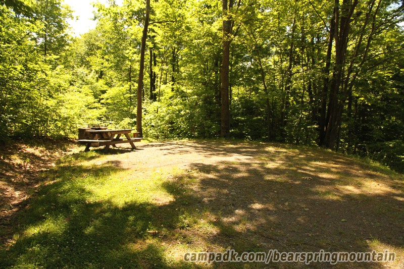 Campsite Photo of Site 15 at Bear Spring Mountain Campground, New York - Looking at Site from Part Way In
