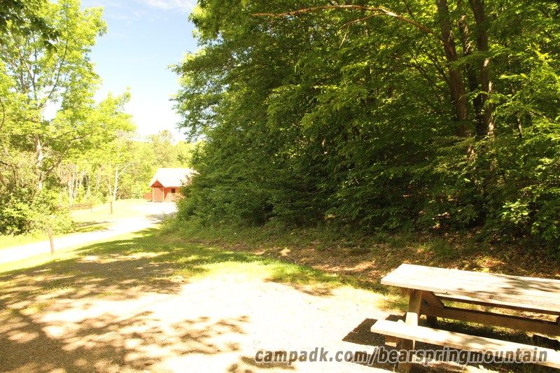 Campsite Photo of Site 15 at Bear Spring Mountain Campground, New York - Cross Site View