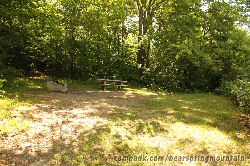Campsite Photo of Site 18 at Bear Spring Mountain Campground, New York - Looking at Site from Part Way In