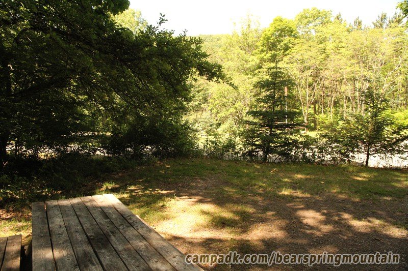 Campsite Photo of Site 18 at Bear Spring Mountain Campground, New York - Cross Site View