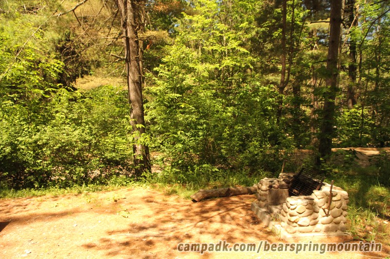 Campsite Photo of Site 2 at Bear Spring Mountain Campground, New York - Cross Site View