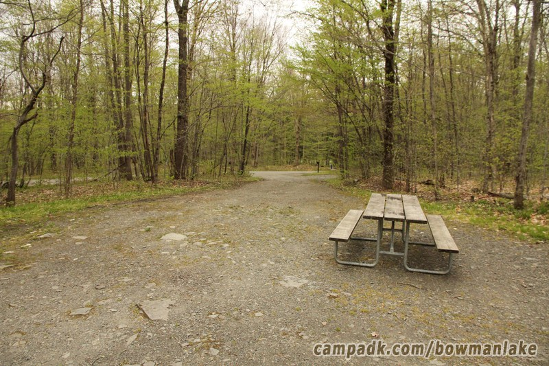Campsite Photo of Site 150 at Bowman Lake State Park, New York - Looking Back Towards Road