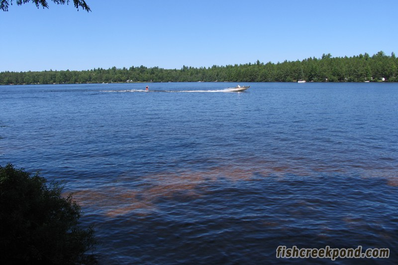 Campsite Photo of Site 227 at Fish Creek Pond Campground, New York - View from Shoreline