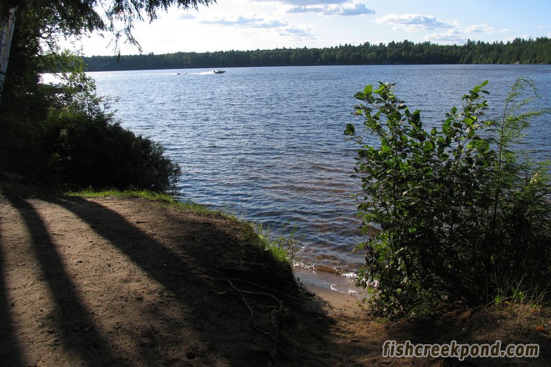 Campsite Photo of Site 227 at Fish Creek Pond Campground, New York - Shoreline