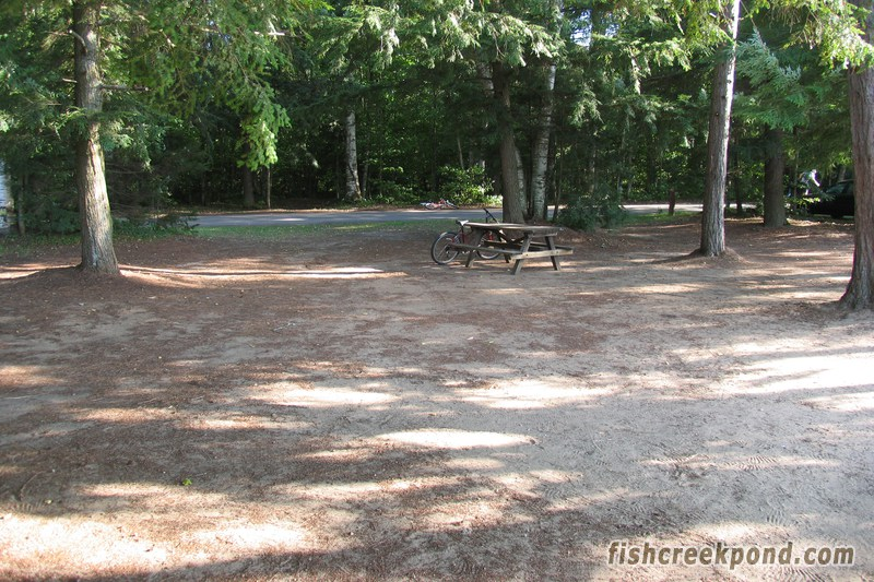 Campsite Photo of Site 227 at Fish Creek Pond Campground, New York - Looking Back Towards Road