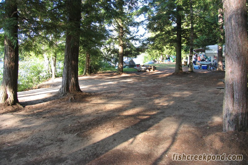 Campsite Photo of Site 227 at Fish Creek Pond Campground, New York - Cross Site View
