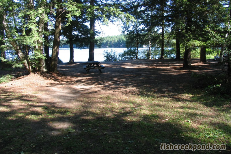 Campsite Photo of Site 227 at Fish Creek Pond Campground, New York - Looking at Site from Road