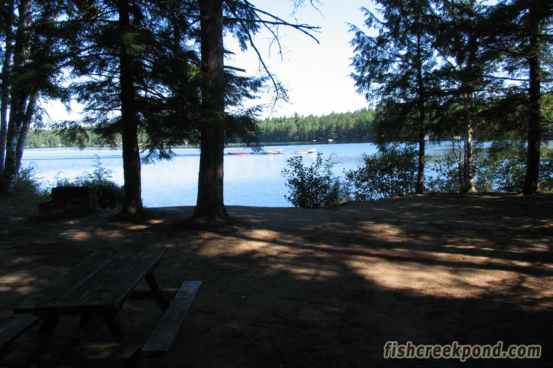 Campsite Photo of Site 227 at Fish Creek Pond Campground, New York - Looking at Site from Part Way In