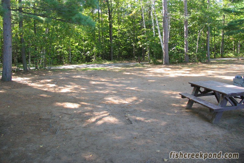 Campsite Photo of Site 206 at Fish Creek Pond Campground, New York - Looking Back Towards Road