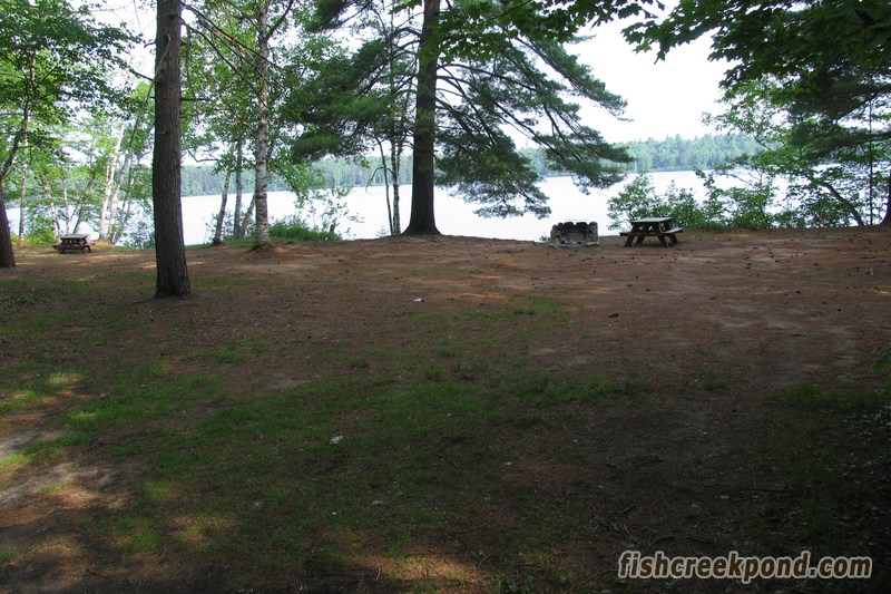 Campsite Photo of Site 206 at Fish Creek Pond Campground, New York - Looking at Site from Road