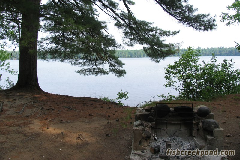 Campsite Photo of Site 206 at Fish Creek Pond Campground, New York - Fireplace View