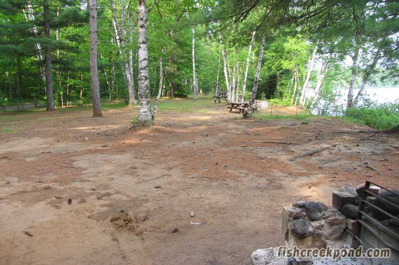 Campsite Photo of Site 206 at Fish Creek Pond Campground, New York - View of Neighbouring Sites