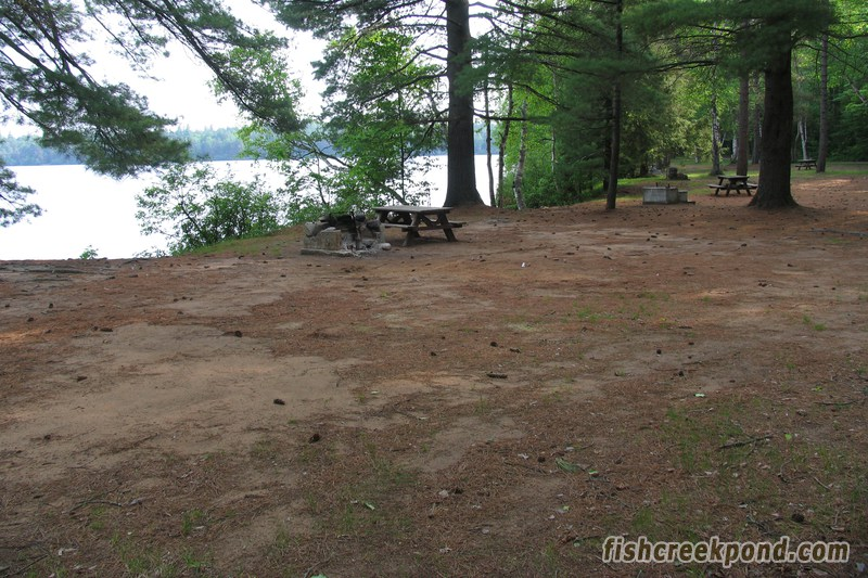 Campsite Photo of Site 206 at Fish Creek Pond Campground, New York - Cross Site View