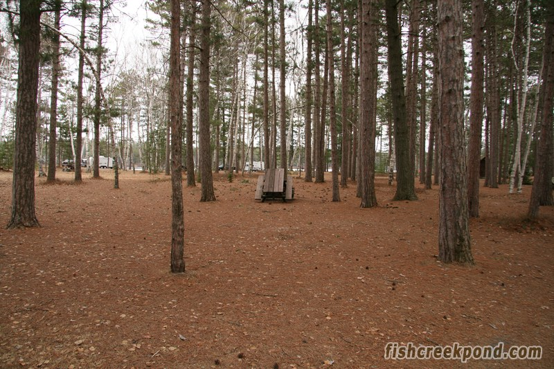 Campsite Photo of Site A19 at Fish Creek Pond Campground, New York - Looking at Site from Road