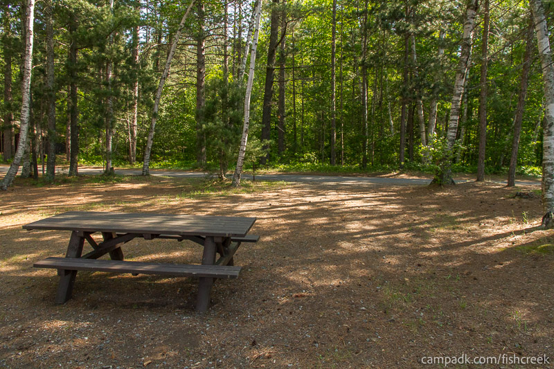 Campsite Photo of Site 87 at Fish Creek Pond Campground, New York - Looking Back Towards Road