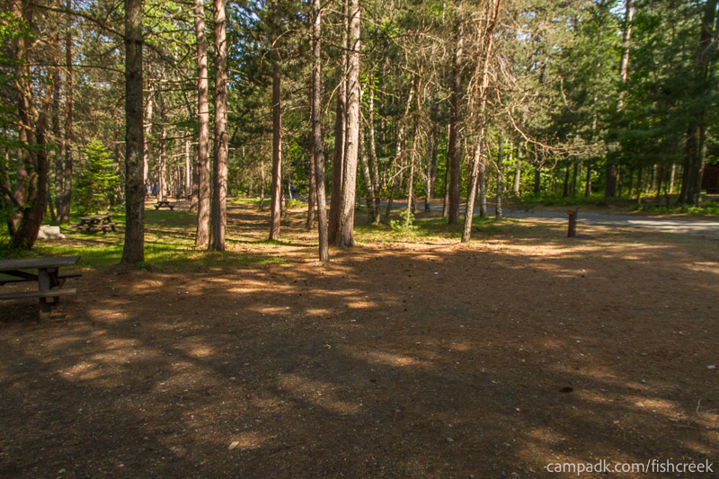 Campsite Photo of Site 88 at Fish Creek Pond Campground, New York - Cross Site View