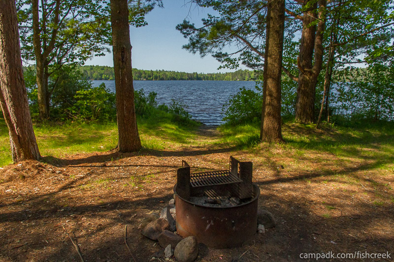 Campsite Photo of Site 88 at Fish Creek Pond Campground, New York - Fireplace View