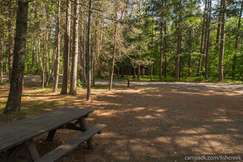 Campsite Photo of Site 88 at Fish Creek Pond Campground, New York - Looking Back Towards Road