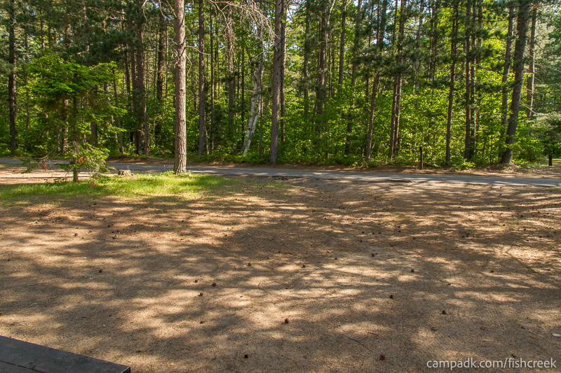 Campsite Photo of Site 90 at Fish Creek Pond Campground, New York - Looking Back Towards Road