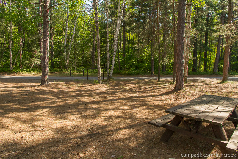 Campsite Photo of Site 93 at Fish Creek Pond Campground, New York - Looking Back Towards Road