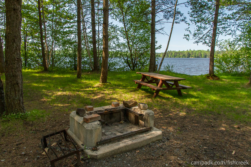 Campsite Photo of Site 96 at Fish Creek Pond Campground, New York - Fireplace View