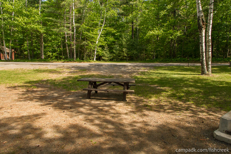 Campsite Photo of Site 99 at Fish Creek Pond Campground, New York - Looking Back Towards Road