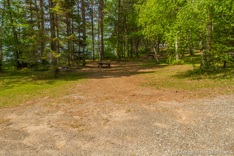 Campsite Photo of Site 100 at Fish Creek Pond Campground, New York - Looking at Site from Road