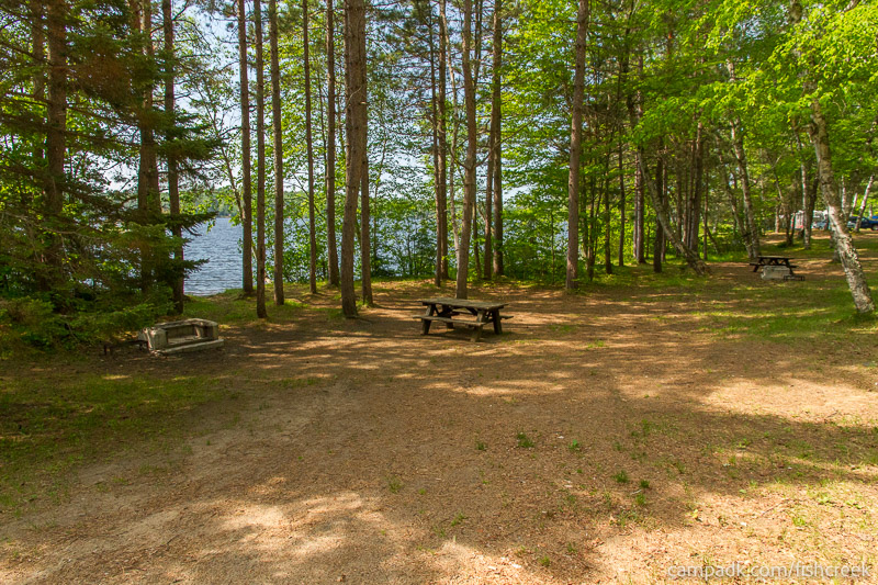 Campsite Photo of Site 100 at Fish Creek Pond Campground, New York - Looking at Site from Part Way In