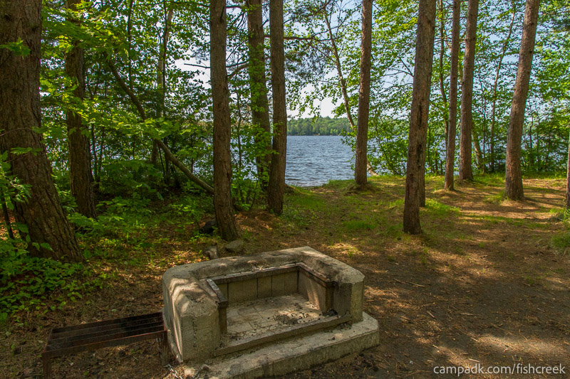 Campsite Photo of Site 100 at Fish Creek Pond Campground, New York - Fireplace View