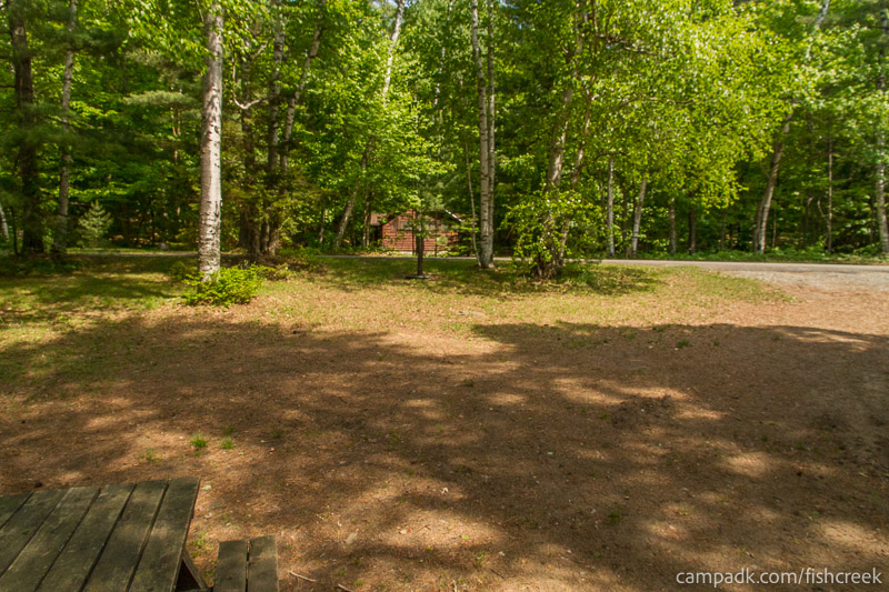 Campsite Photo of Site 100 at Fish Creek Pond Campground, New York - Looking Back Towards Road