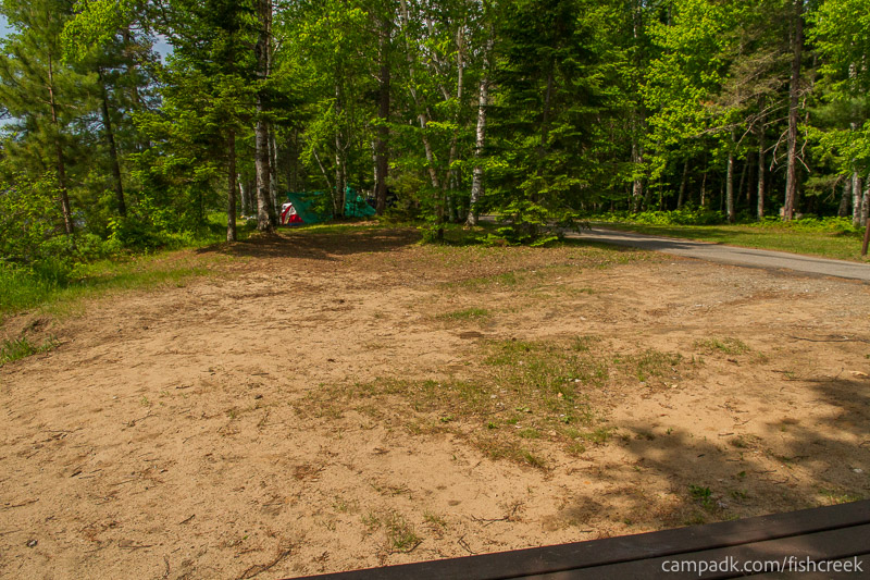 Campsite Photo of Site 111 at Fish Creek Pond Campground, New York - Cross Site View