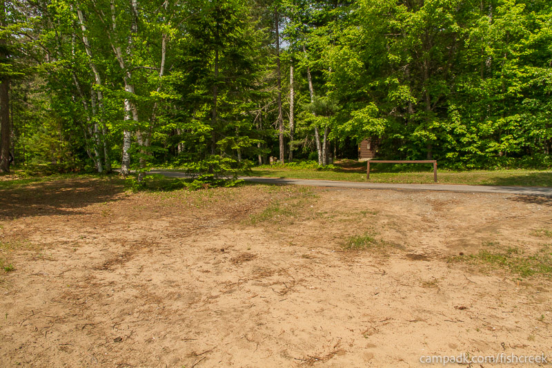 Campsite Photo of Site 111 at Fish Creek Pond Campground, New York - Looking Back Towards Road