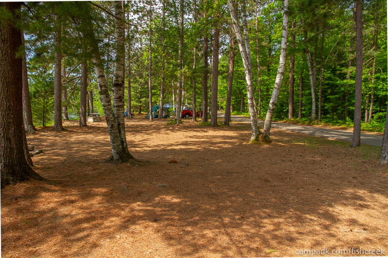 Campsite Photo of Site 116 at Fish Creek Pond Campground, New York - Cross Site View