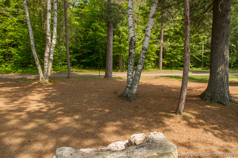 Campsite Photo of Site 116 at Fish Creek Pond Campground, New York - Looking Back Towards Road