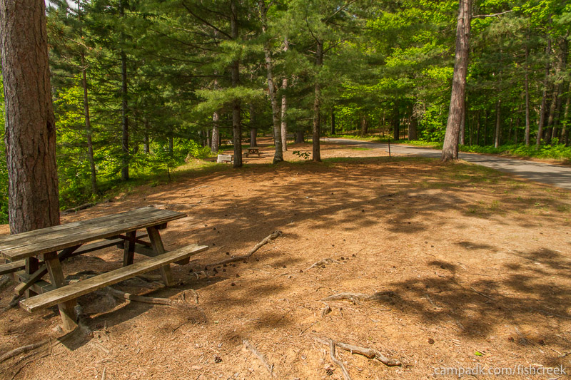 Campsite Photo of Site 123 at Fish Creek Pond Campground, New York - Cross Site View