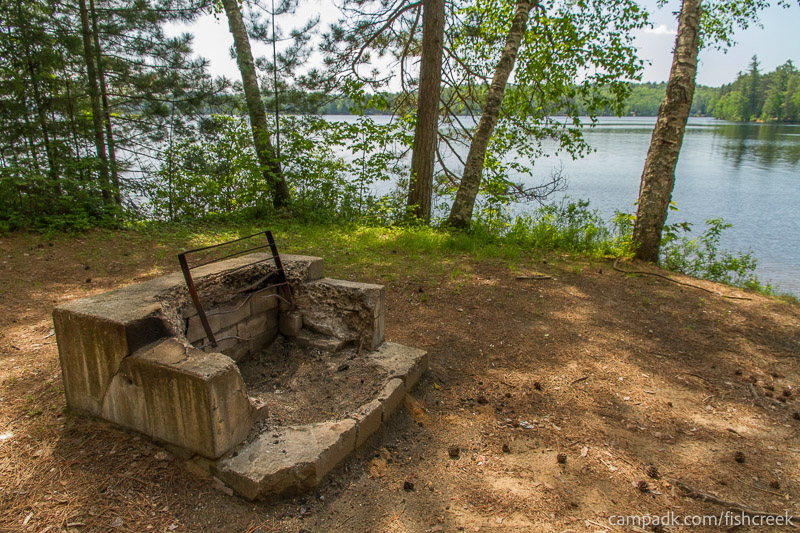 Campsite Photo of Site 123 at Fish Creek Pond Campground, New York - Fireplace View